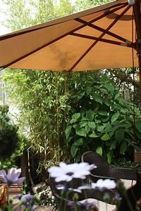 Winterharte Bäumchen Für Balkon : moderne pflanzk bel f r balkon terrasse und garten native plants gartenblog ~ Buech-reservation.com Haus und Dekorationen