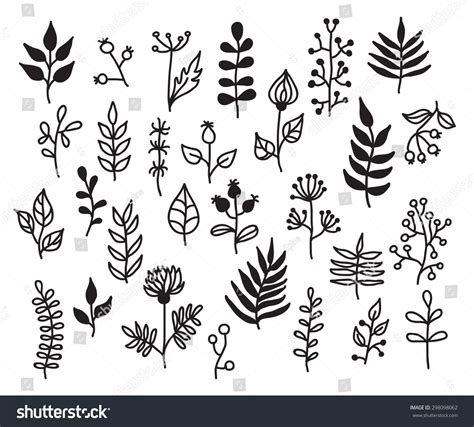 set handdraw vector floral elements leaves stock vector