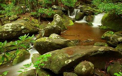 Nature Pond Wallpapers Rivers 1280 Background Desktop