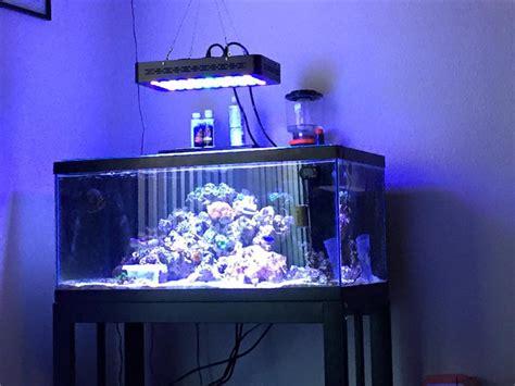 cheap reef tank lighting 55pcs x 3w dimmable led coral reef aquarium lights full