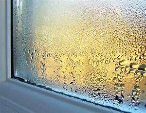 Condensation on Windows - Why It Happens and How to Fix It ...
