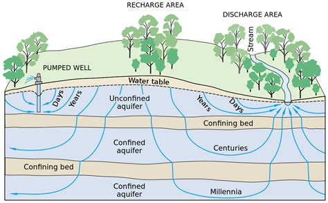 how deep is the water table where i live groundwater dependent ecosystems wikipedia