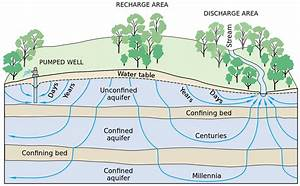 Groundwater-dependent Ecosystems