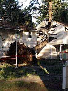 Apartment Damage More Than Deposit by Four Dead More Than A Million In U S Without Power After