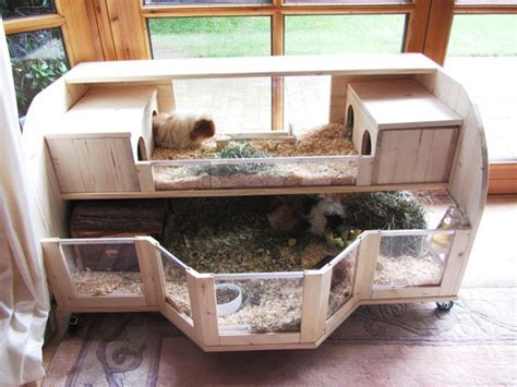 Creative Rabbit Hutches - amazing guinea pig cages guinea pig hub