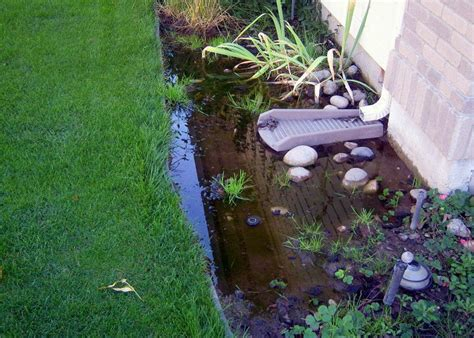 property drainage solutions 7 signs you may have a drainage problem mastertechmold s blog