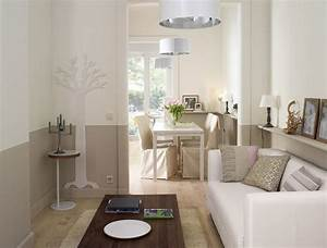 Un salon deco dans l39esprit nature murs bicolores ou for Couleur peinture salon zen 0 couleur peinture salon conseils et 90 photos pour vous