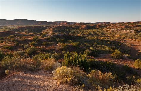Why Western American Landscape Photography Matters Sage