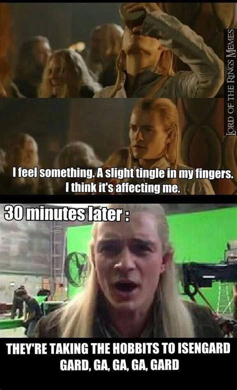 Hobbit Memes - 584 best lord of the rings hobbit memes images on pinterest lord of the rings middle earth