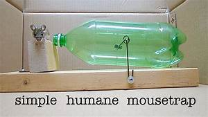How To Make A Simple Catch And Release Bottle Mousetrap