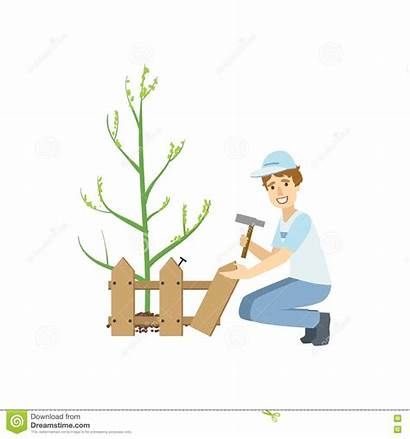 Fence Around Tree Building Cartoon Volunteer Planted