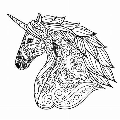 Unicorn Coloring Head Unicorns Simple Pages Adult