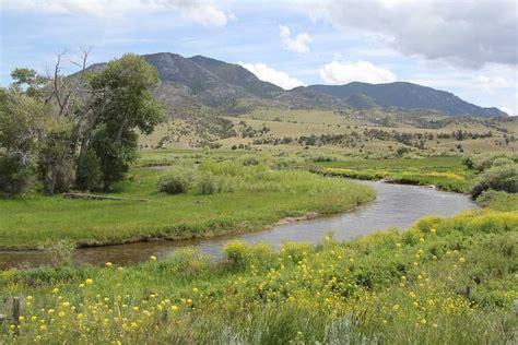montana small stream fly fishing