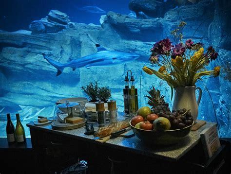 airbnb l aquarium de loue une chambre immerg 233 e