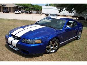 2003 Ford Mustang Cobra for Sale | ClassicCars.com | CC-1248208