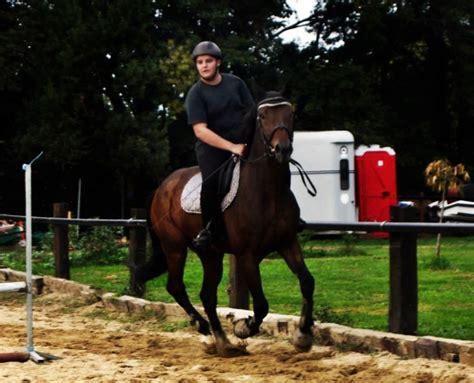 comment monter a cheval comment bien monter 224 cheval