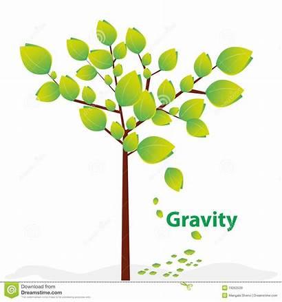Gravity Creative Illustration Explained Dreamstime