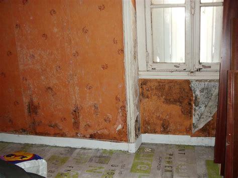 chambre humide que faire mur humide fabulous comment reparer un mur en placo