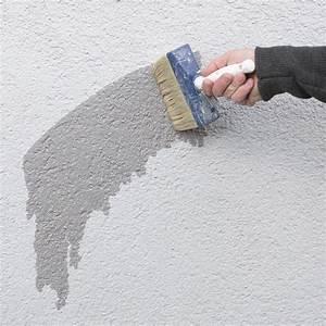 Sockelfarbe Außen Grau : haus sockel streichen anleitung und tipps alpina au en streichen ~ Watch28wear.com Haus und Dekorationen