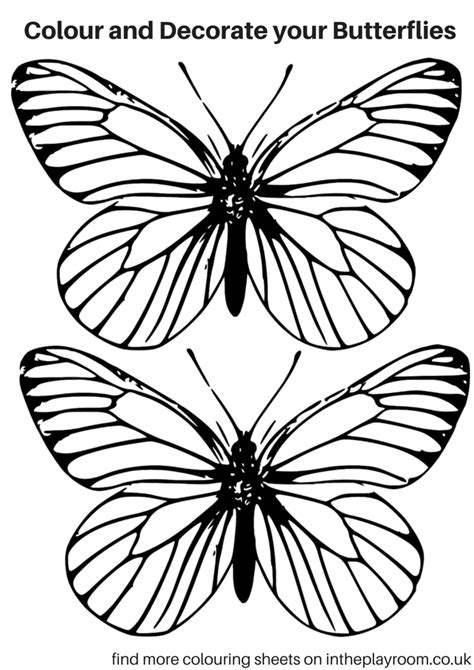Coloring pages for learning numbers and colors for preschool and kindergarten. Free Printable Butterfly Colouring Pages - In The Playroom