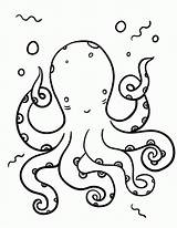 Coloring Octopus Printable Pdf Coloringcafe Sheets Colouring Sheet Printables Prints Template Outline Crafts Everfreecoloring Discover sketch template