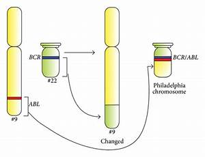 Therapy Of Chronic Myeloid Leukemia  Twilight Of The