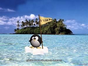 Pingouin Sur La Banquise : mon pote le pingouin frileux ~ Melissatoandfro.com Idées de Décoration