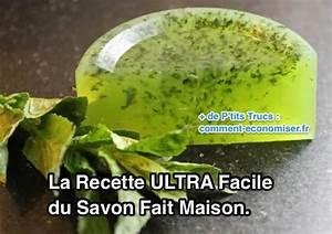 Insecticide Naturel Pour La Maison : la recette ultra facile du savon fait maison ~ Nature-et-papiers.com Idées de Décoration