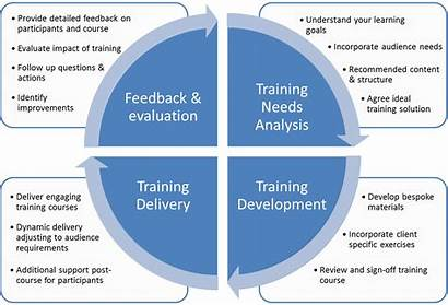 Training Development Cycle Process Consulting Needs Courses