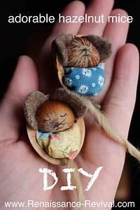 Basteln Mit Nüssen : 264 best walnut shell crafts images on pinterest walnut ~ A.2002-acura-tl-radio.info Haus und Dekorationen