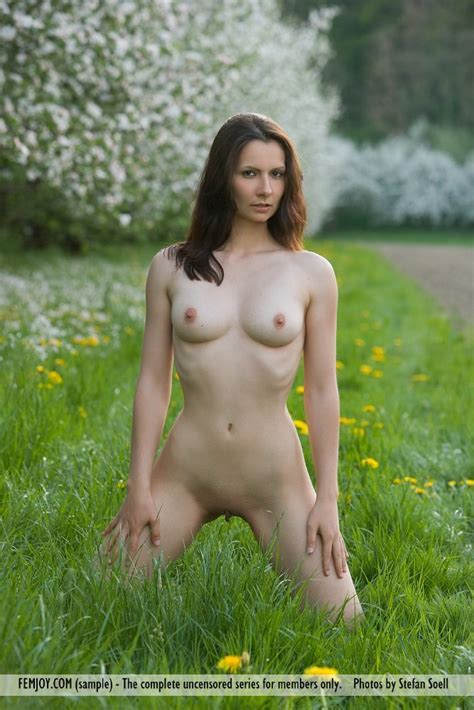 Euro Babes Db Naked Babe In Grass