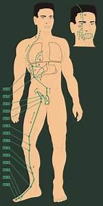 Vy_32_Inovace_02_6 - Gesundheit Und Krankheiten