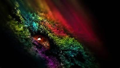 Colorful Eye Artistic
