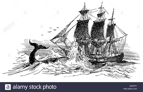 Whaling Boat Clipart by Fishing Whaling Whale Attacking Whaling Ship Drawing From