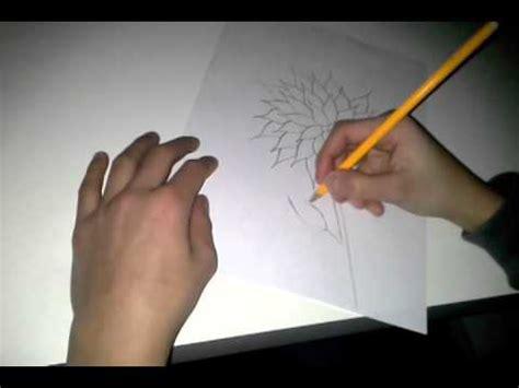 bloem tekenene hoe moet je een bloem tekenen