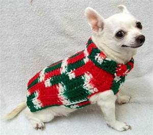 16 Cute Pictures Of Dogs In Ugly Christmas Sweaters