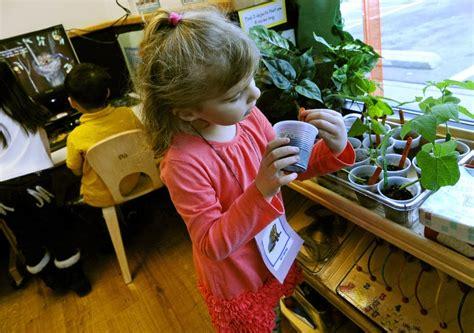 preschool in minneapolis preschool scholarships in minn tap market forces 736