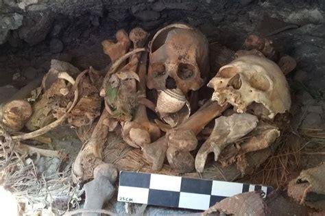 year  macaw mummy  mexico   oldest