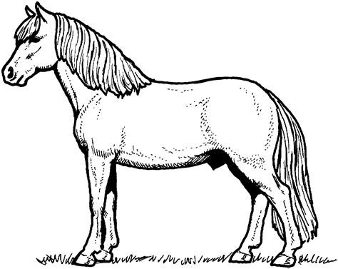 horses to color free coloring pages
