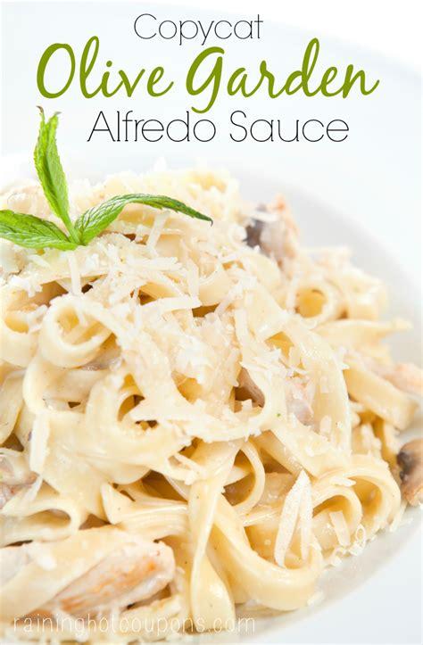 olive garden alfredo recipe copycat olive garden alfredo sauce recipe
