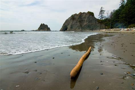 rialto beach beach in olympic national park thousand