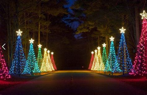 best georgia christmas residual lights pic 17 best images about presidential pathways on gardens the drummer boy and