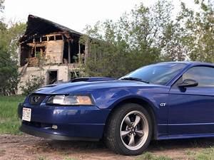 03 GT deluxe. : Mustang