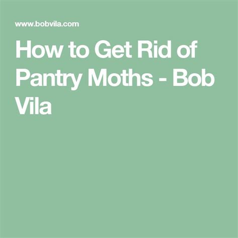 17 best ideas about pantry moths on moth