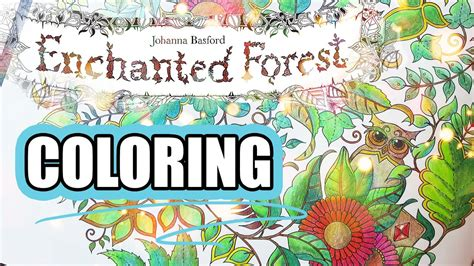 coloring book journey  enchanted forest  johanna