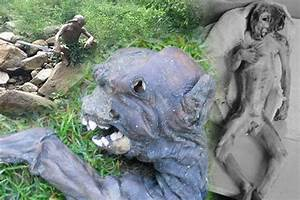 Gollum 'found' in China: Other alien sightings ...