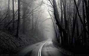 Mist, Black, Road, Trees, Hd, Wallpapers, Desktop, And, Mobile, Images, U0026, Photos