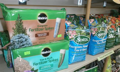 When To Fertilize Trees And Shrubs Sargents Nursery