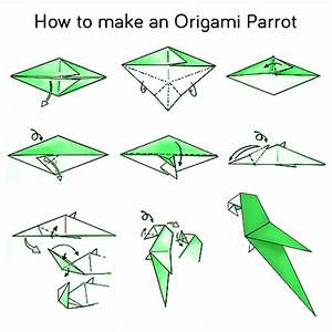 Steps How To Make A Origami Parrot