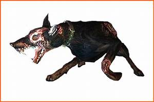Related Keywords & Suggestions for evil doberman